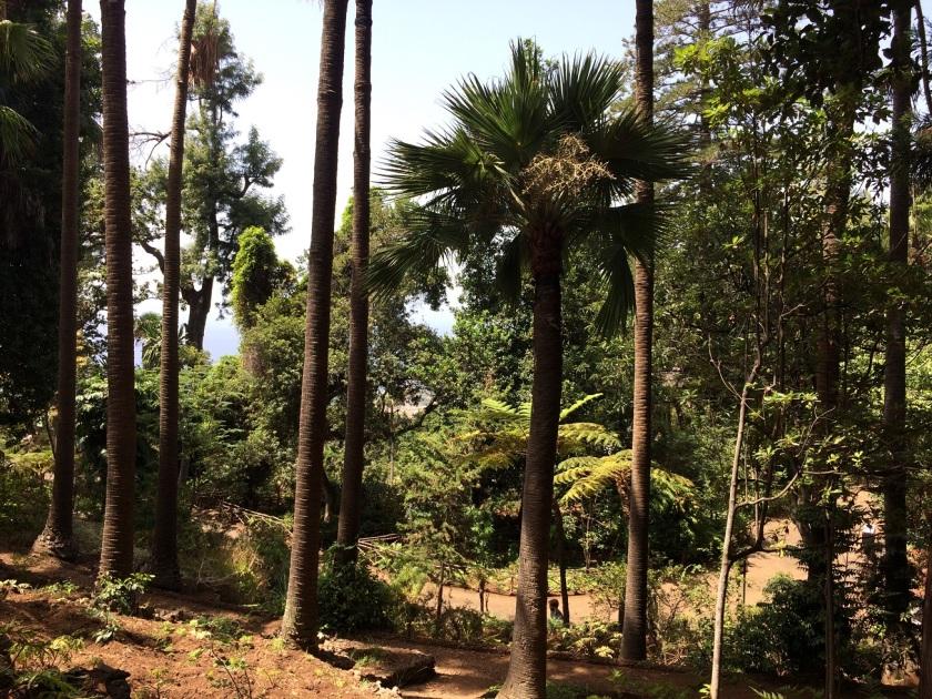 IMG_0923_BotanicGardens