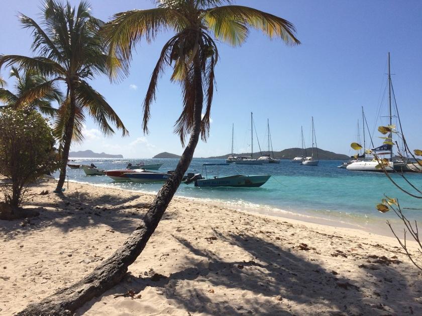 IMG_2868_TobagoCays_Beach