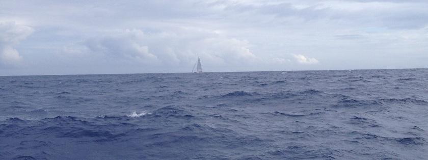 IMG_3899_XA2_Yacht2